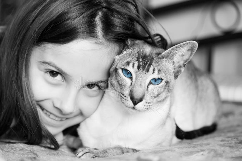 Little girl with her Siamese cat. A cute little girl snuggling up to her Siamese cat stock images