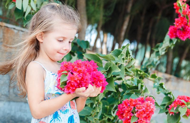 Little girl is holding beautiful pink flowers. bougainvillea stock images