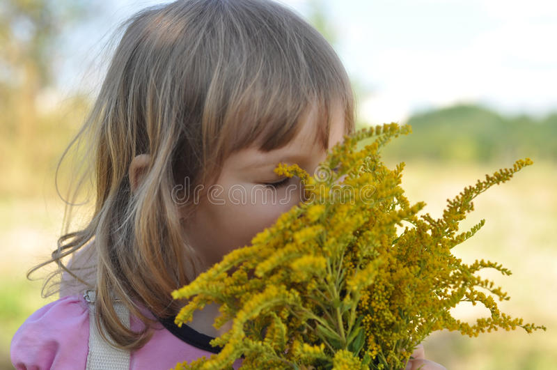 A little girl holding a bouquet of field summer flowers and smelling it with her eyes closed. A photo of a little girl holding a bouquet of field summer flowers stock images