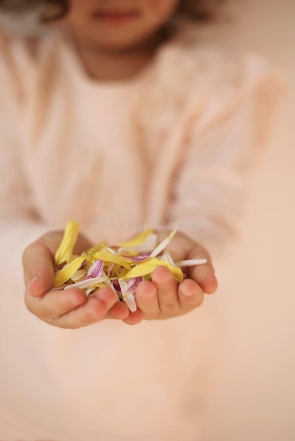 A little girl holding flower petals in hands.  stock photos