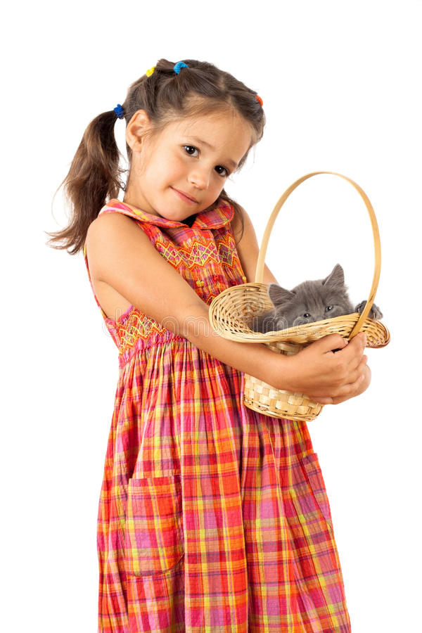 Little girl holding a gray kitten in basket. Isolated on white royalty free stock images