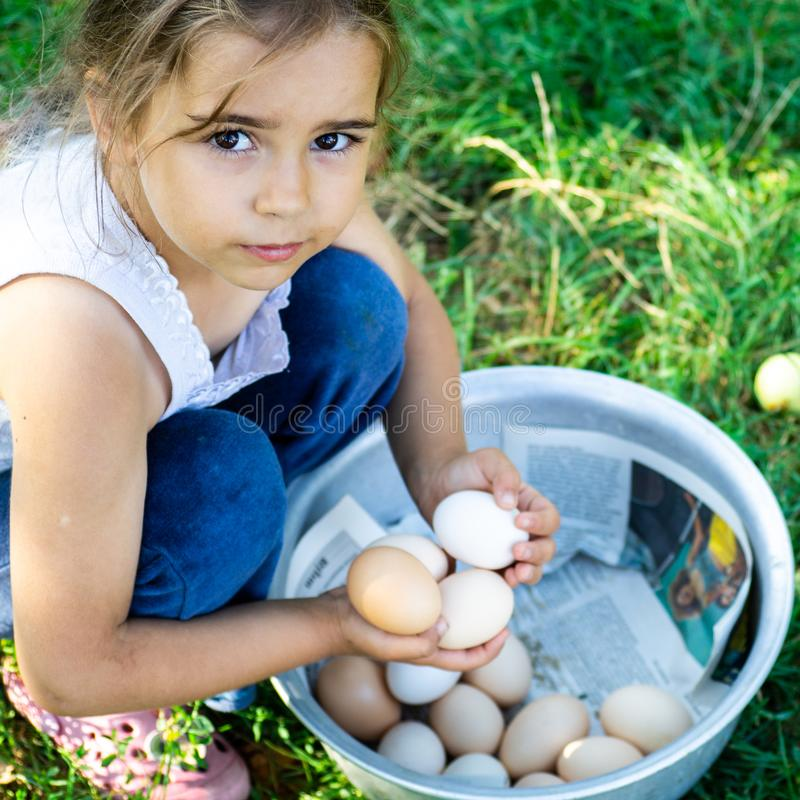 Little girl holding and picking good eggs quality organic and bring to the eye on the farm. Healthy foods. Easter. royalty free stock image