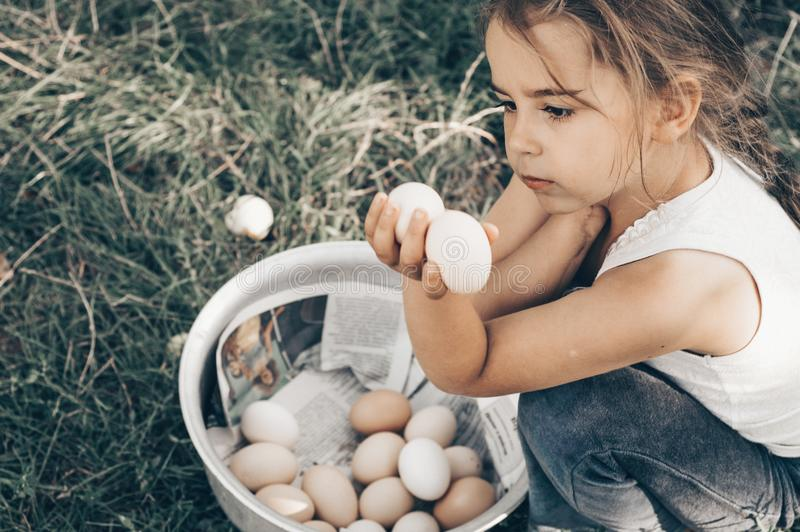 Little girl holding and picking good eggs quality organic and bring to the eye on the farm. Healthy foods. Easter. royalty free stock photo