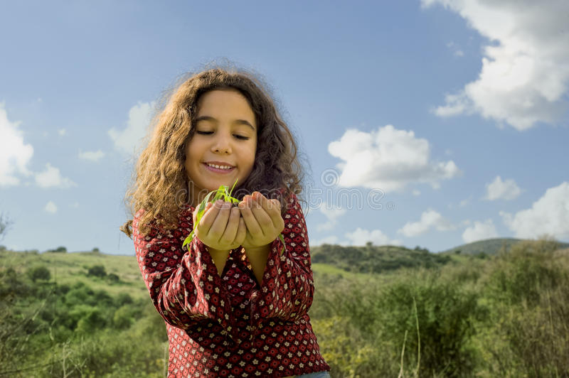 Download Little girl holding plant stock photo. Image of cultivated - 12484174