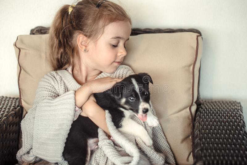 A little girl holding a puppy in her hands. The concept of Pets royalty free stock photo