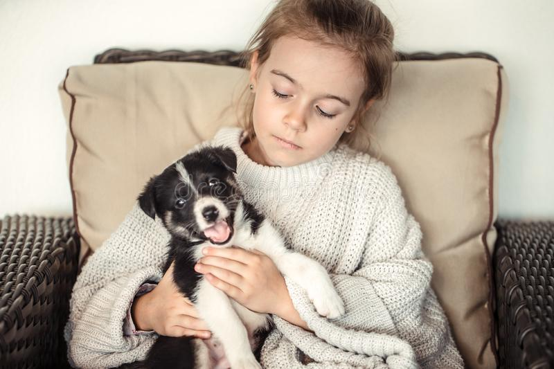 A little girl holding a puppy in her hands. The concept of Pets royalty free stock photography
