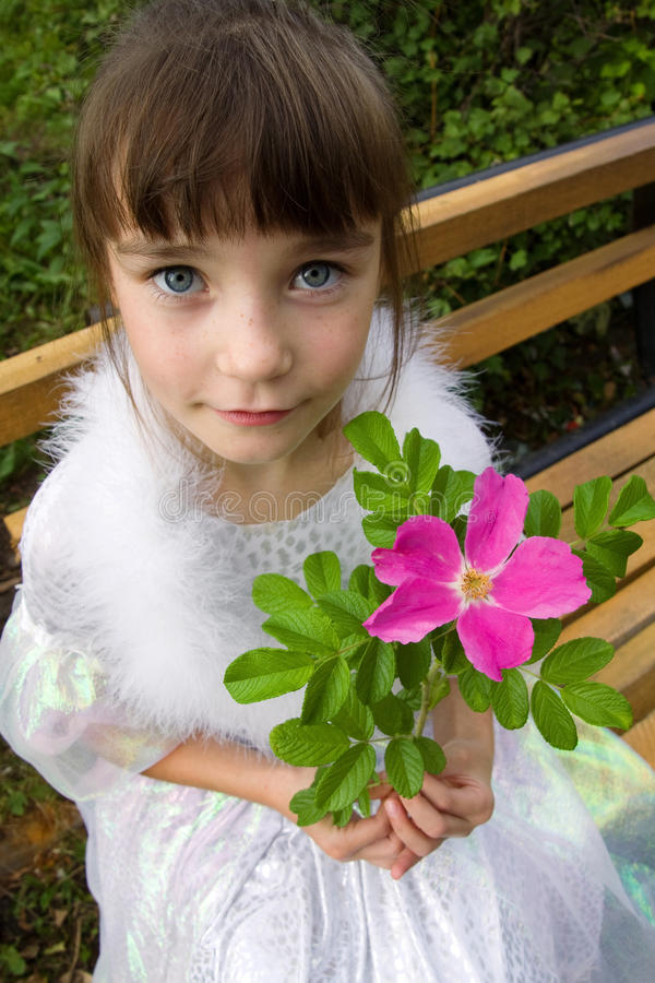 Little Girl Holding Rose Flower Stock Image Image 21280351