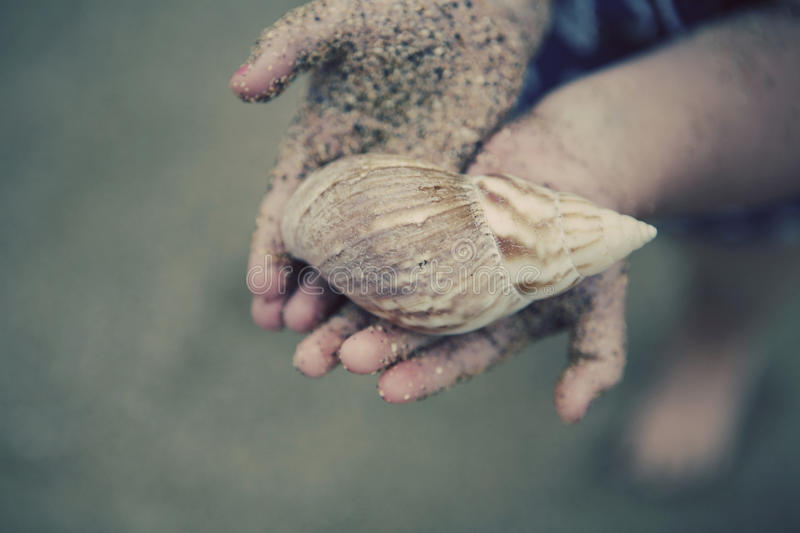 Download Little Girl Holding Seashell Stock Photo - Image of seashell, white: 20238188