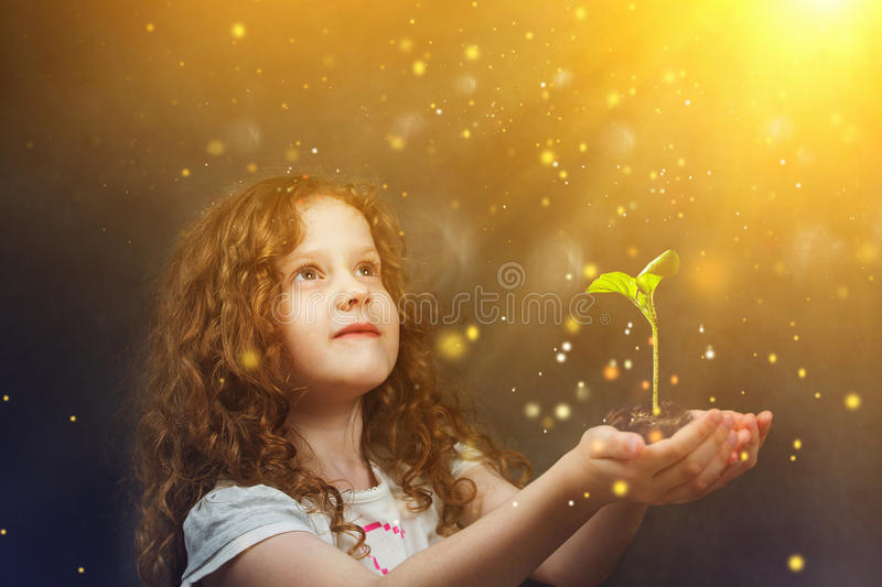 Little girl holding young green plant in sunlight. Ecology concept. stock images