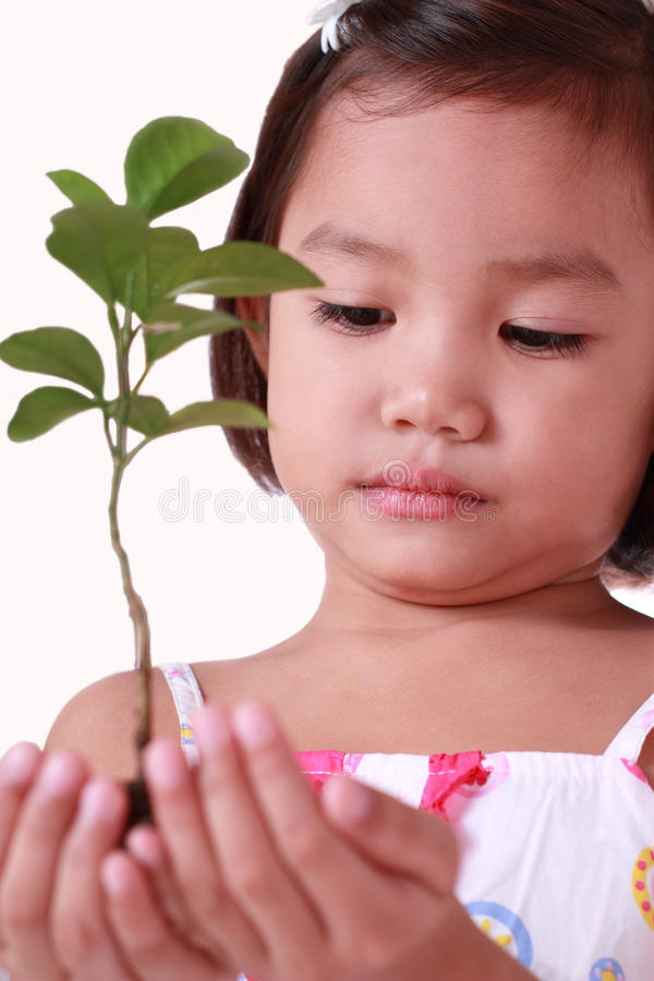 Little girl holding a young tree stock image