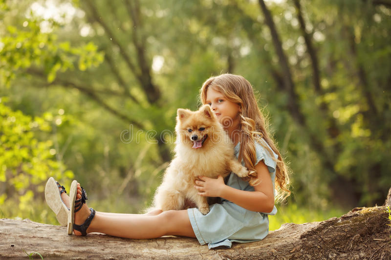 Little girl hug Spitz stock photo