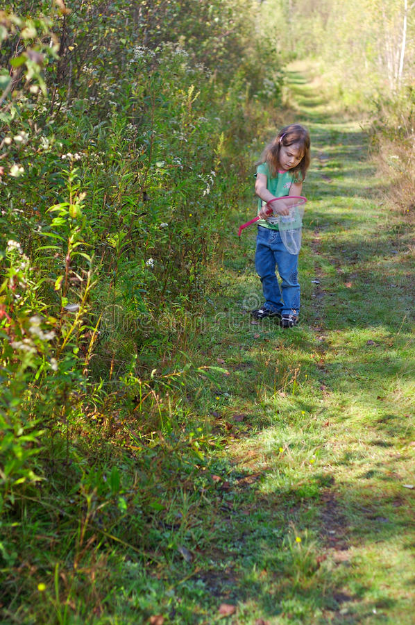 Girl hunting butterflies. Little girl hunting butterflies with a net in a trail in the woods stock photos