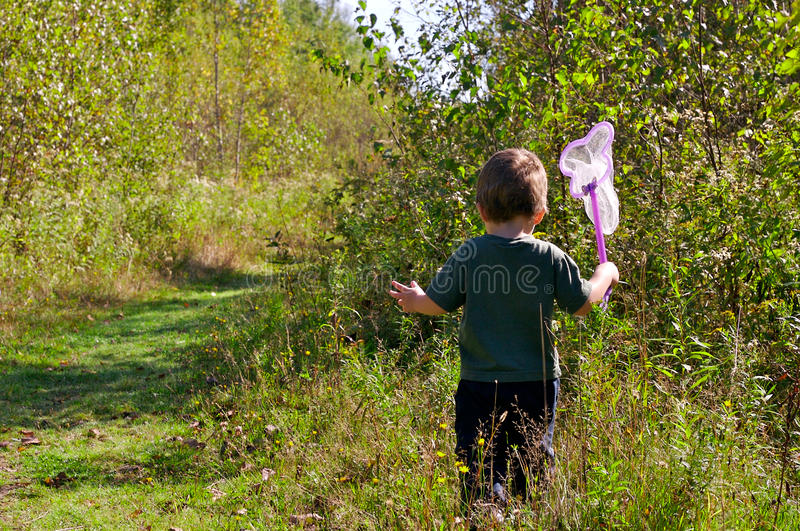 Girl hunting butterflies. Little girl hunting butterflies with a net in a trail in the woods royalty free stock images