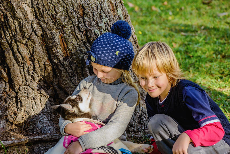 Little girl and husky puppy royalty free stock images