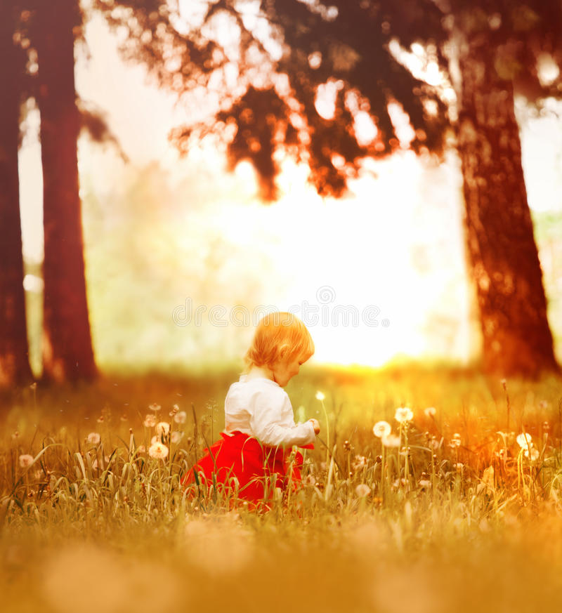Free Little Girl In The Forest Royalty Free Stock Photography - 15517907
