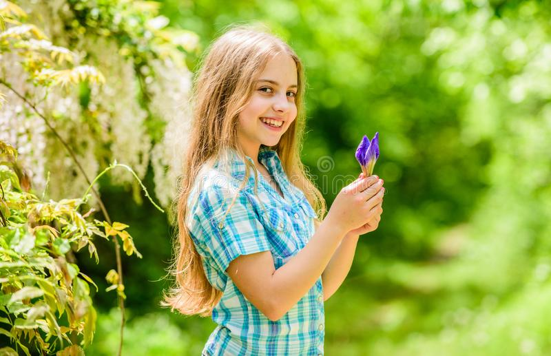 Little girl and iris flower. happy child hold iris flower. summer vacation. Green environment. Natural beauty. Childhood royalty free stock photos