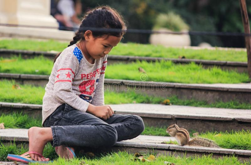 Little girl with squirrel stock images