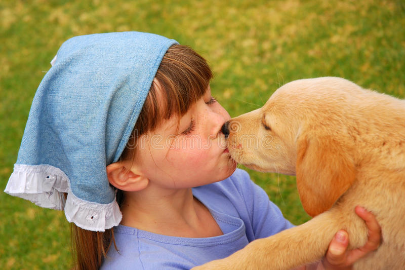 Little girl kissing puppy stock images