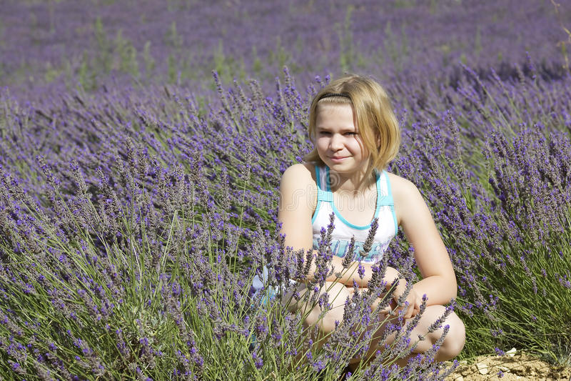 Little girl in a lavender field stock photo