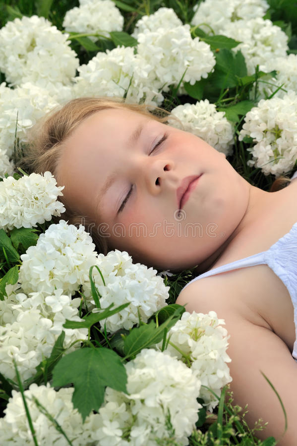 Download Little Girl Laying In Flowers - Snowball Royalty Free Stock Image - Image: 12434066