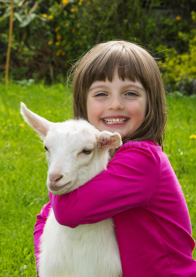 little girl with little goat royalty free stock images