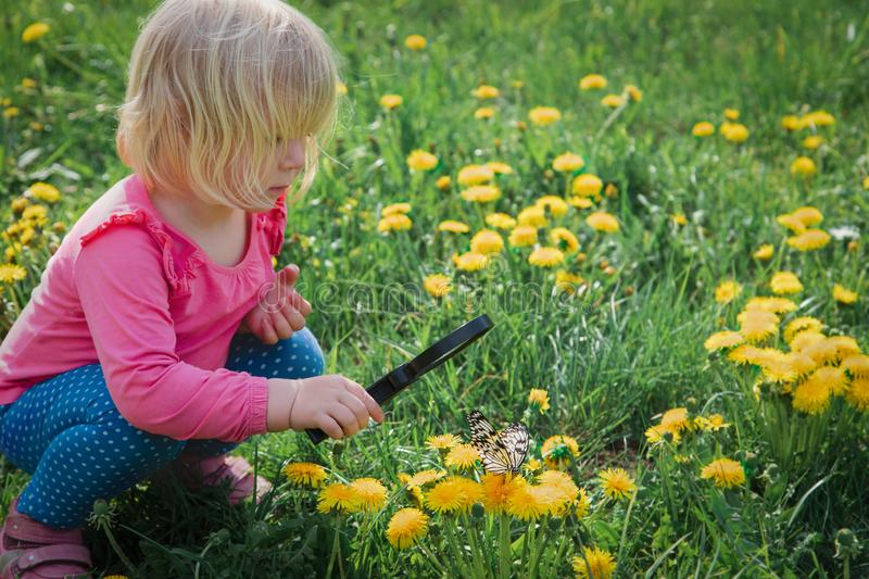 Little girl looking at butterfy, kids learning nature royalty free stock images