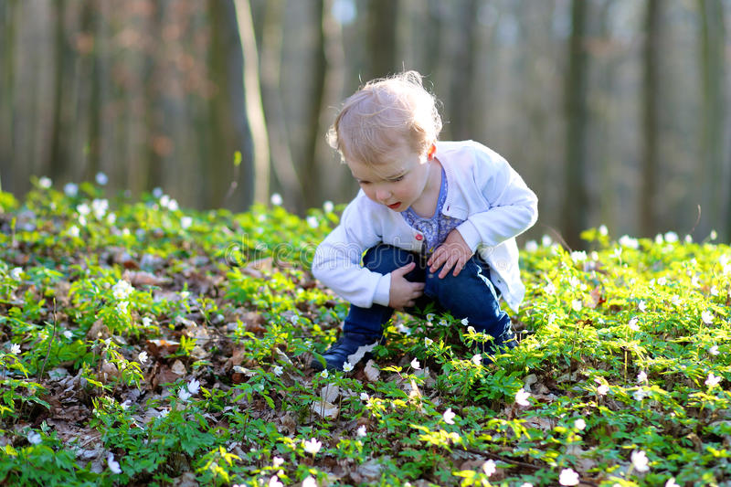 Little girl looking for Easter eggs in the forest royalty free stock photography