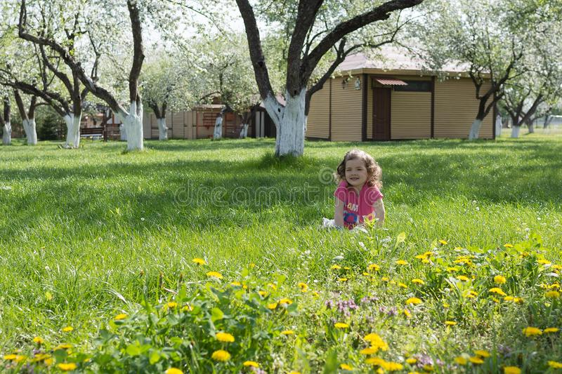 Little girl lying at the dandelion lawn.  royalty free stock photography