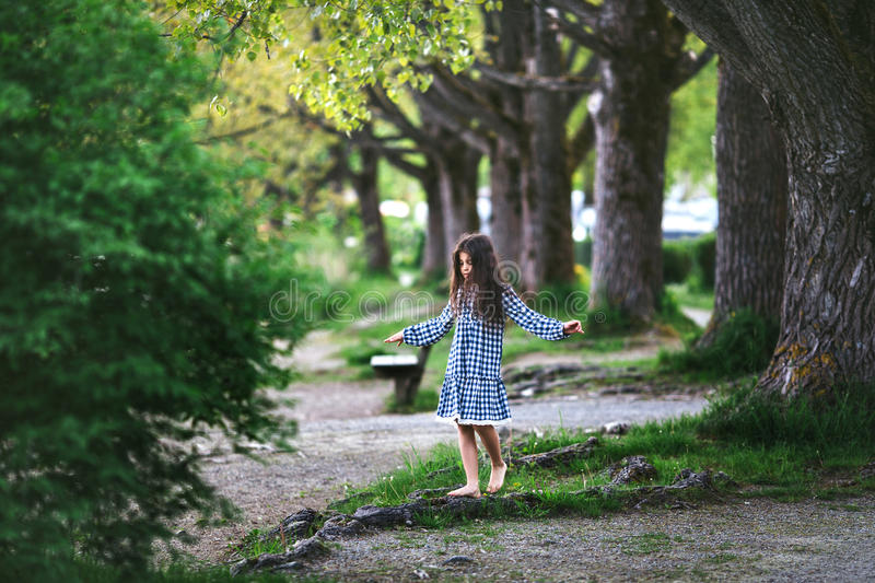 Little girl near the big tree. Little girl in a checkered dress walks around the roots of a large tree stock images