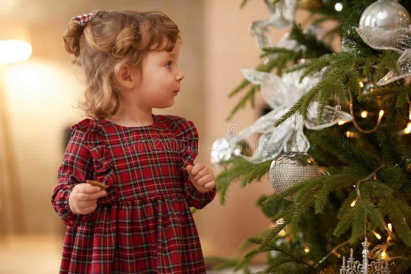 Little Girl Near Christmas Tree Celebrating Christmas. Christmas Tree and New Year`s Toys and Lights royalty free stock images