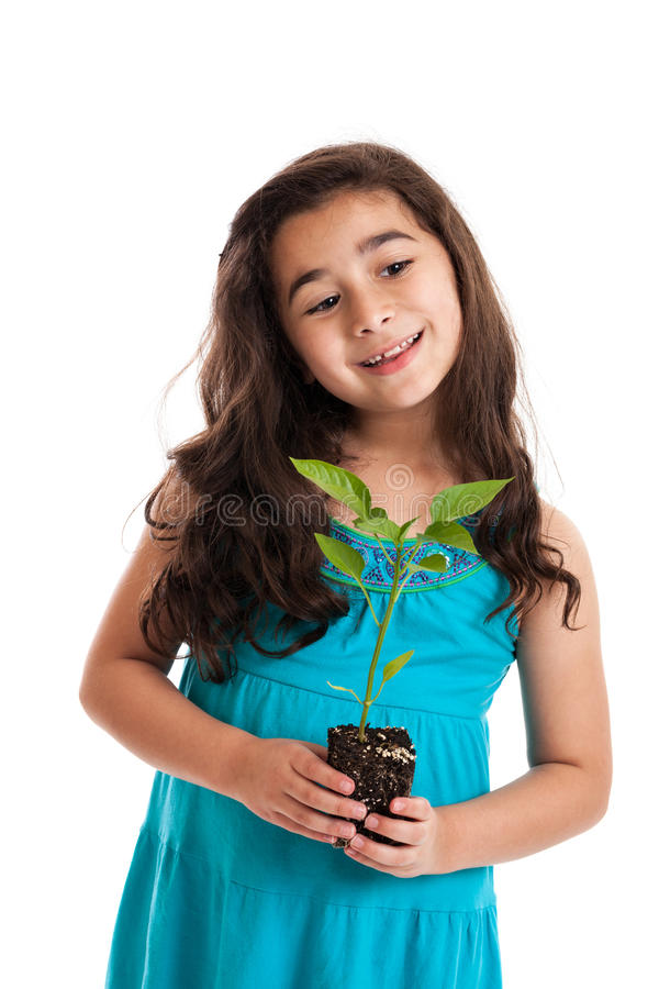 Download Little girl with new plant stock photo. Image of cutey - 24738232