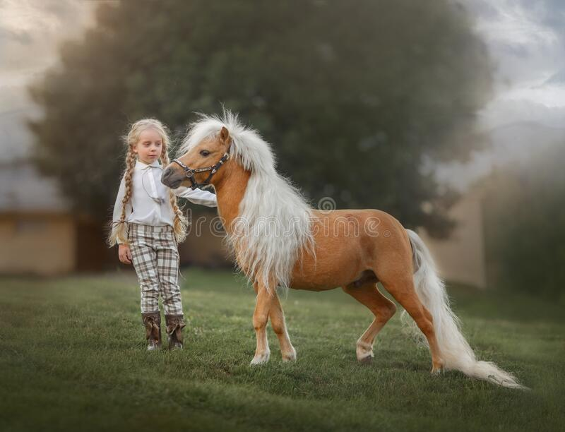 Little girl with palomino miniature horse insurer day royalty free stock photo