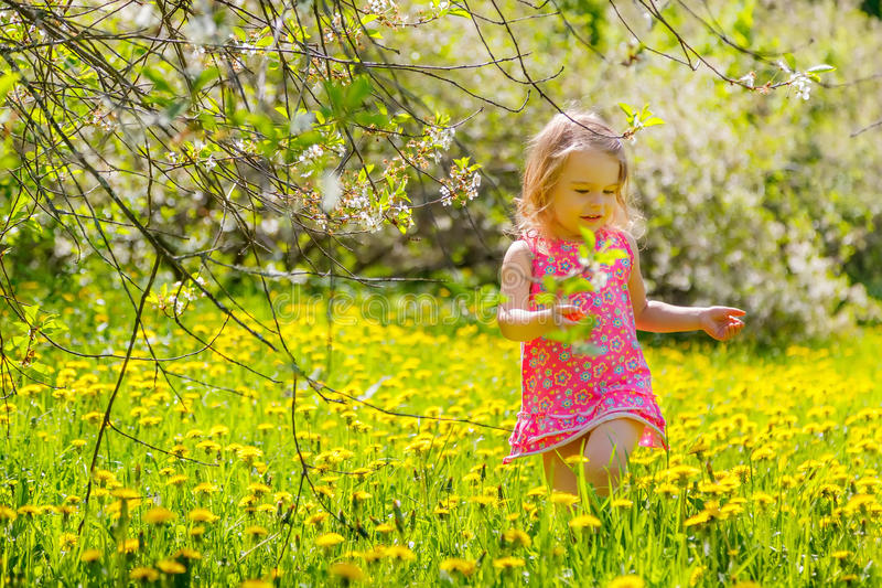 Download Little girl in the park stock photo. Image of cherry - 38418248