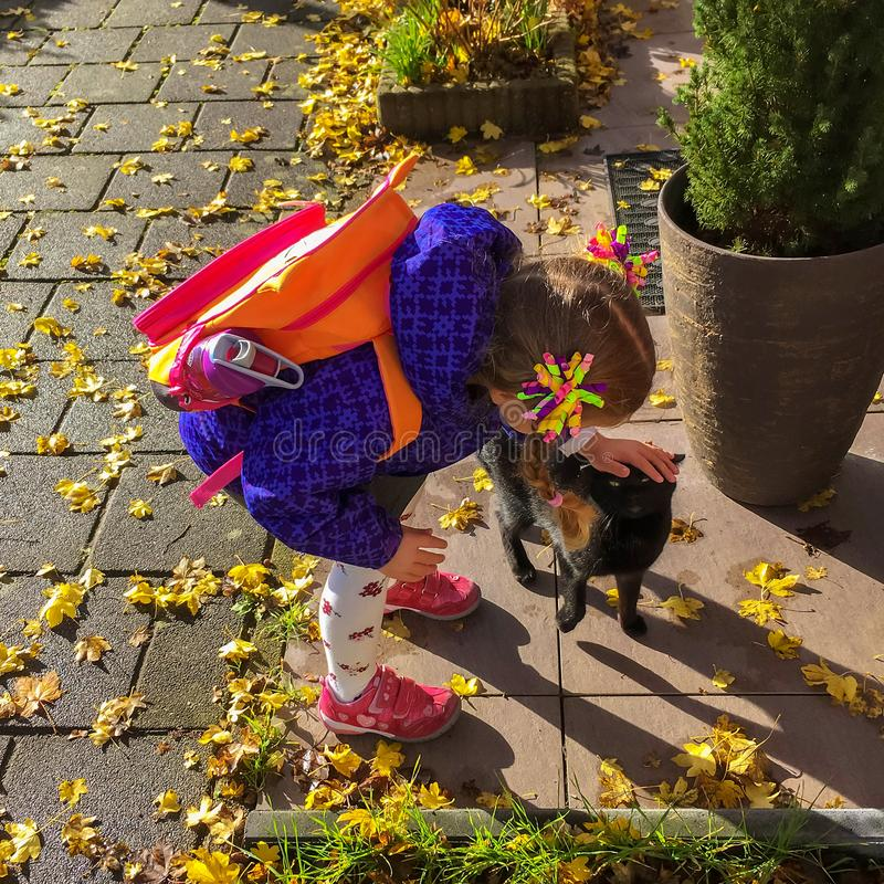 Little girl and pet kitten meet together. royalty free stock images
