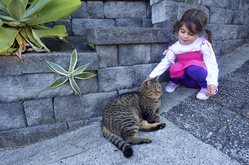 Little girl petting a cat stock photography