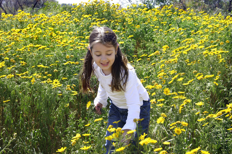 Little girl picking flowers stock photo