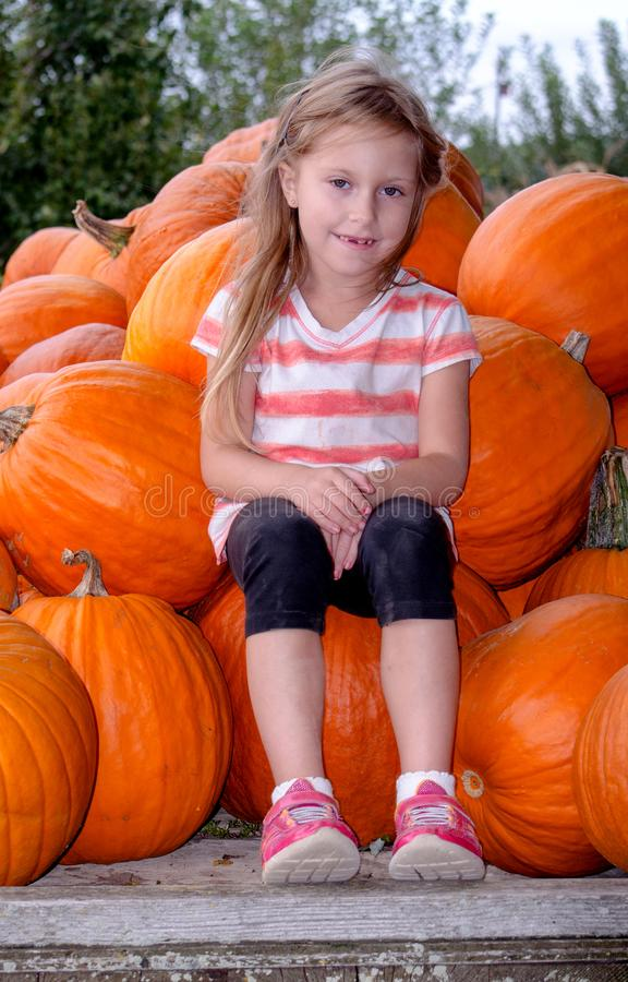 Little girl with a pile of pumpkins royalty free stock photography