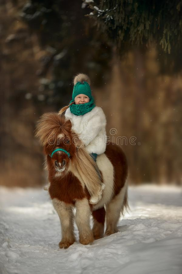 Little girl with pinto pony in winter park stock image
