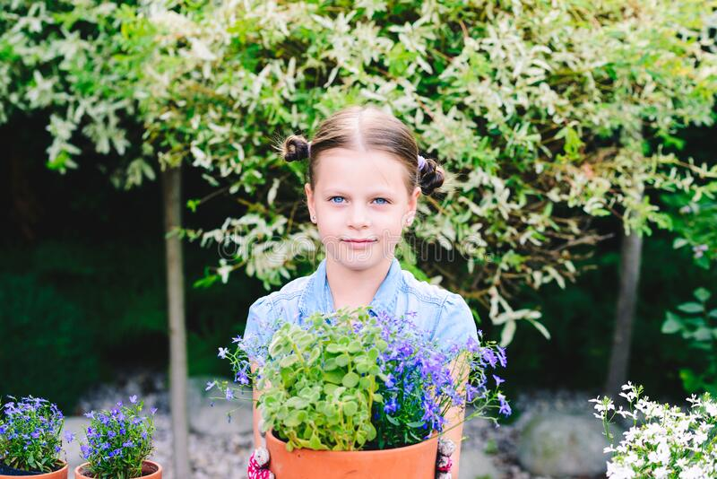 Little girl planting flowers in pots royalty free stock photo
