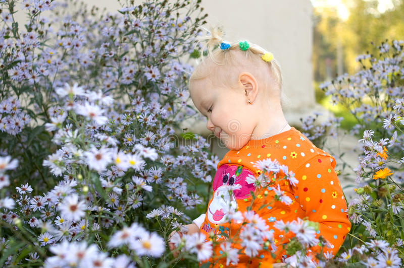 Little Girl Play In Aster Flowers In The Park. Stock Photos