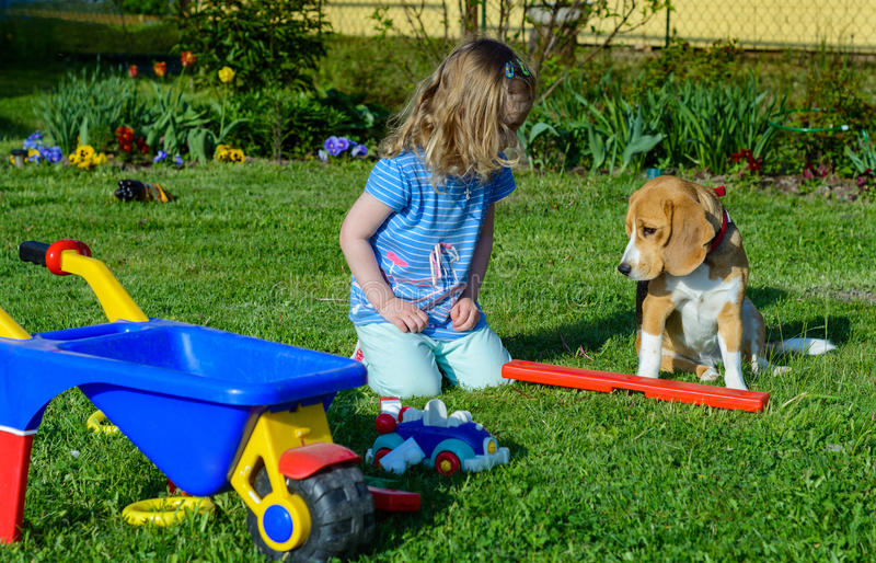 Little girl play with dog in the garden royalty free stock photography