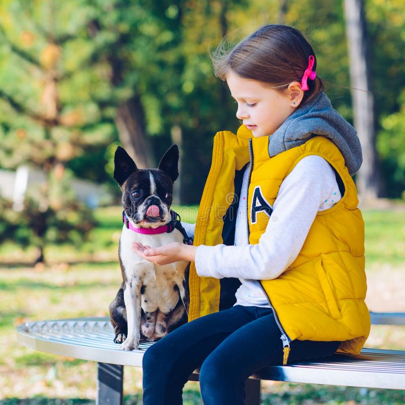 Little girl playing in an autumn park with boston terrier dog. L stock photo