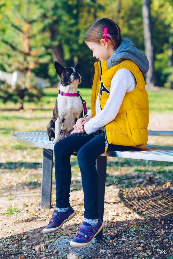 Little girl playing in an autumn park with boston terrier dog. L stock photos