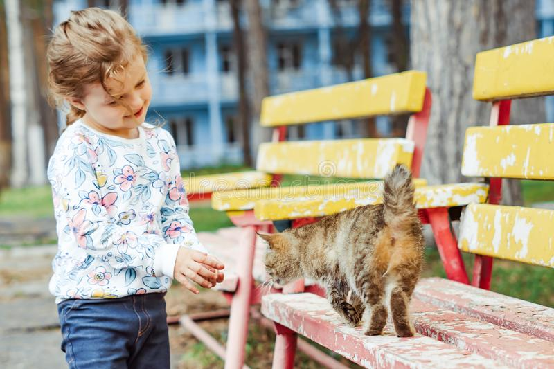 Little girl playing with cat. Little girl playing with a cat on a Park bench royalty free stock images