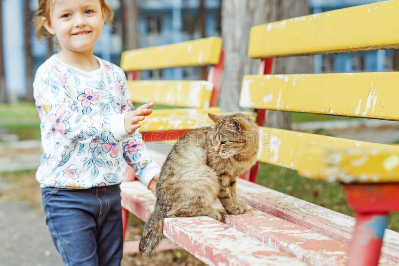 Little girl playing with cat. Little girl playing with a cat on a Park bench stock image