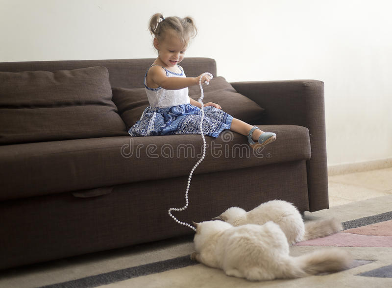 Little girl playing with cats royalty free stock photos
