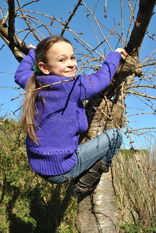 Little girl playing: climbing a tree stock photo