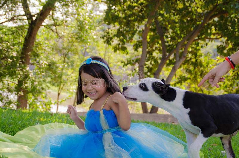 Little girl playing with dog. Little girl playing with a dog in a park royalty free stock photo