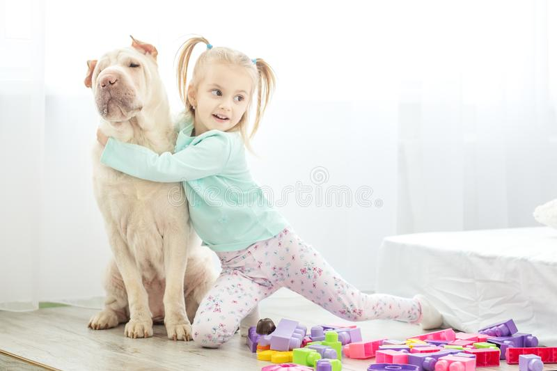 Little girl is playing with a dog in the room. The concept of li royalty free stock image