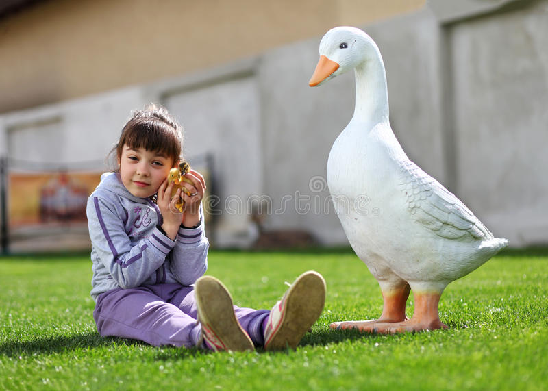 Little girl playing with duckling on lawn near goose stock photo